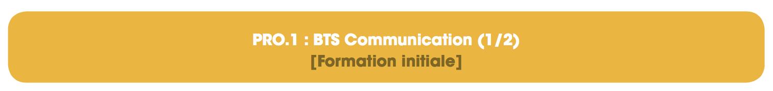 https://www.cesacom.fr/wp-content/uploads/2019/05/pro-1-communnication-cesacom-lille-e1575293489515.png